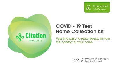 rapid covid test kit for sale